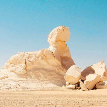 Safari Egypt & Oasis